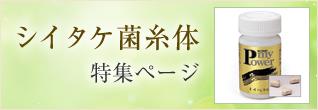 シイタケ菌糸体 特集ページ
